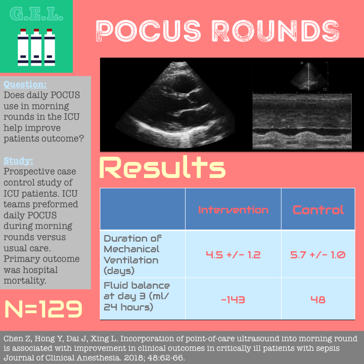 POCUS Rounds in ICU